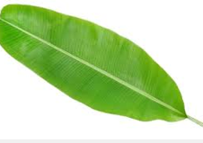 banana leaf massage